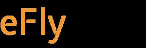 LogoEflySchwarz